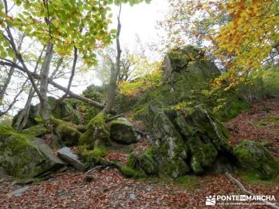 Hayedo de Tejera Negra [Serie Clásica];lugares de montaña definicion senderismo